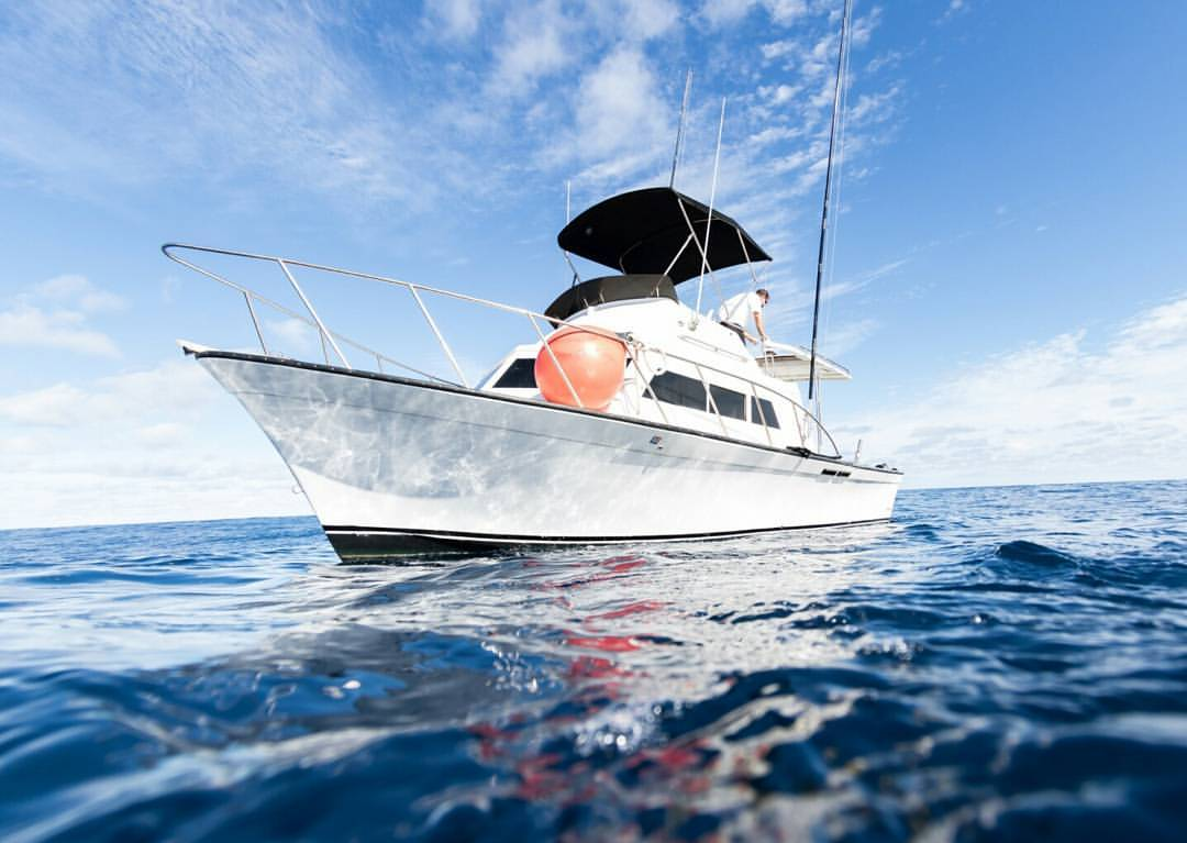 North shore charter boat 39 foxy lady 39 the seeker oahu for Shore fishing oahu
