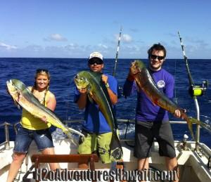 Mahi Mahi or Dolphin Fish or Dorado