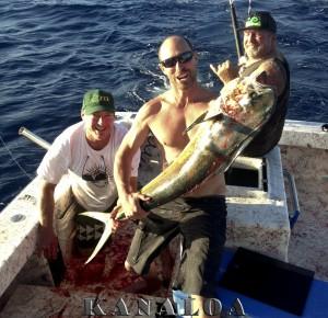 mahi mahi charter fishing