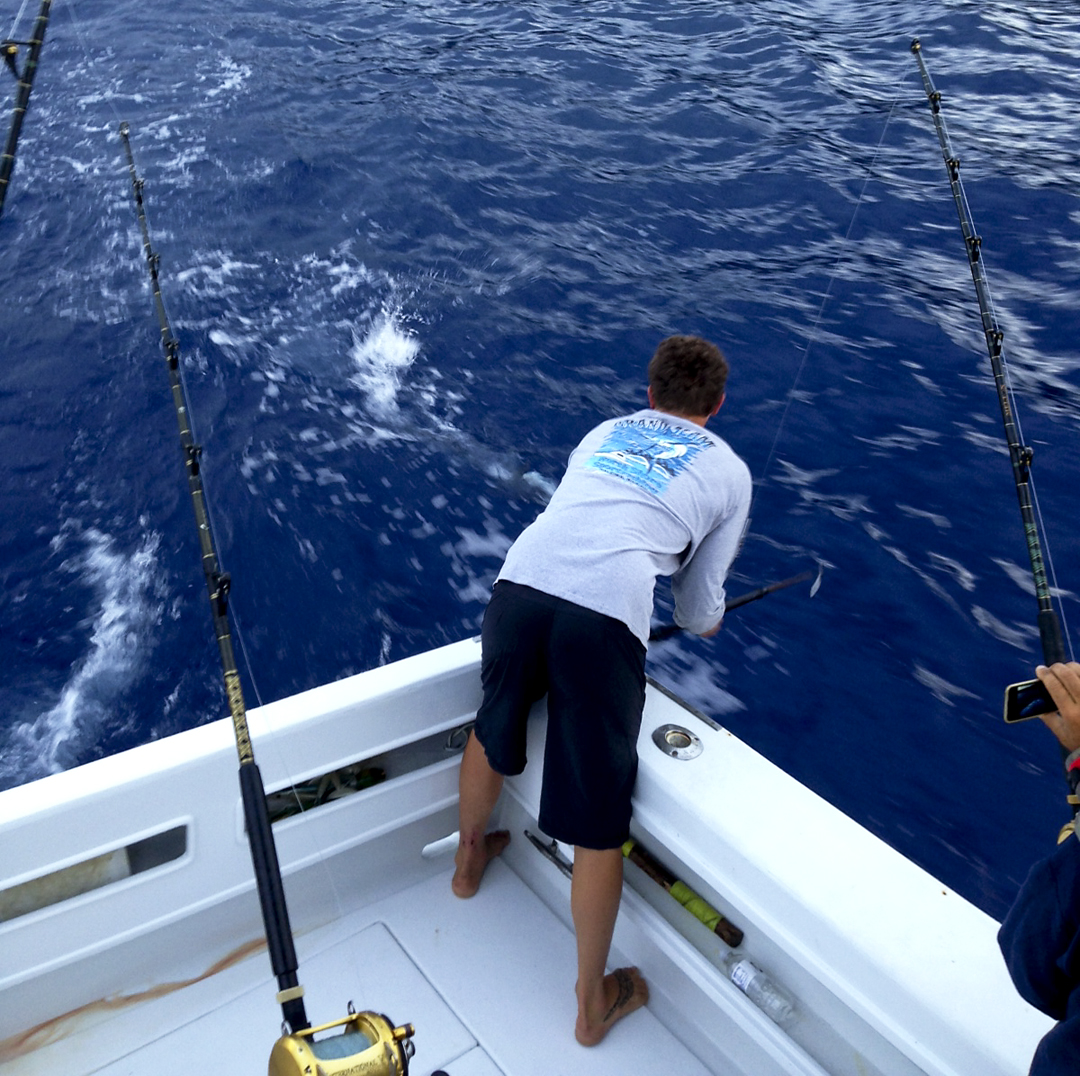wahoo charter fishing hawaii north shore kona trip ahi mahi dolphin