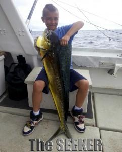 Mahi Mahi Dorado Dolfin Fish