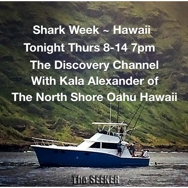 Shark Week filmed on The Seeker off the North Shore of Oahu, Hawaii