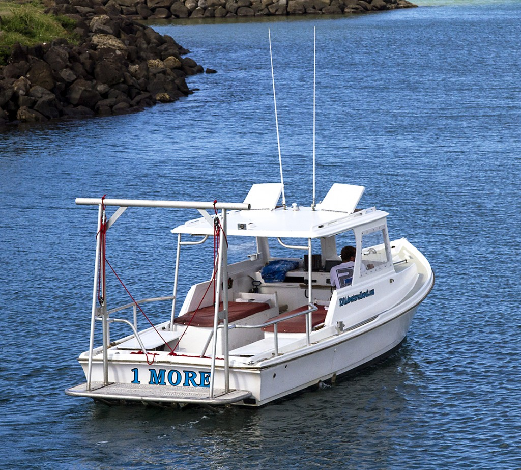 1 More Shark Dive Boat Haleiwa harbor