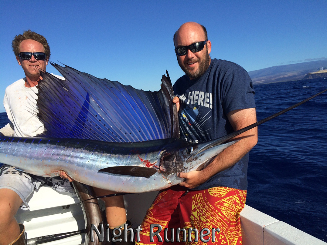 Nightrunner 1-30-15 sailfish chupu sportfishing hawaii