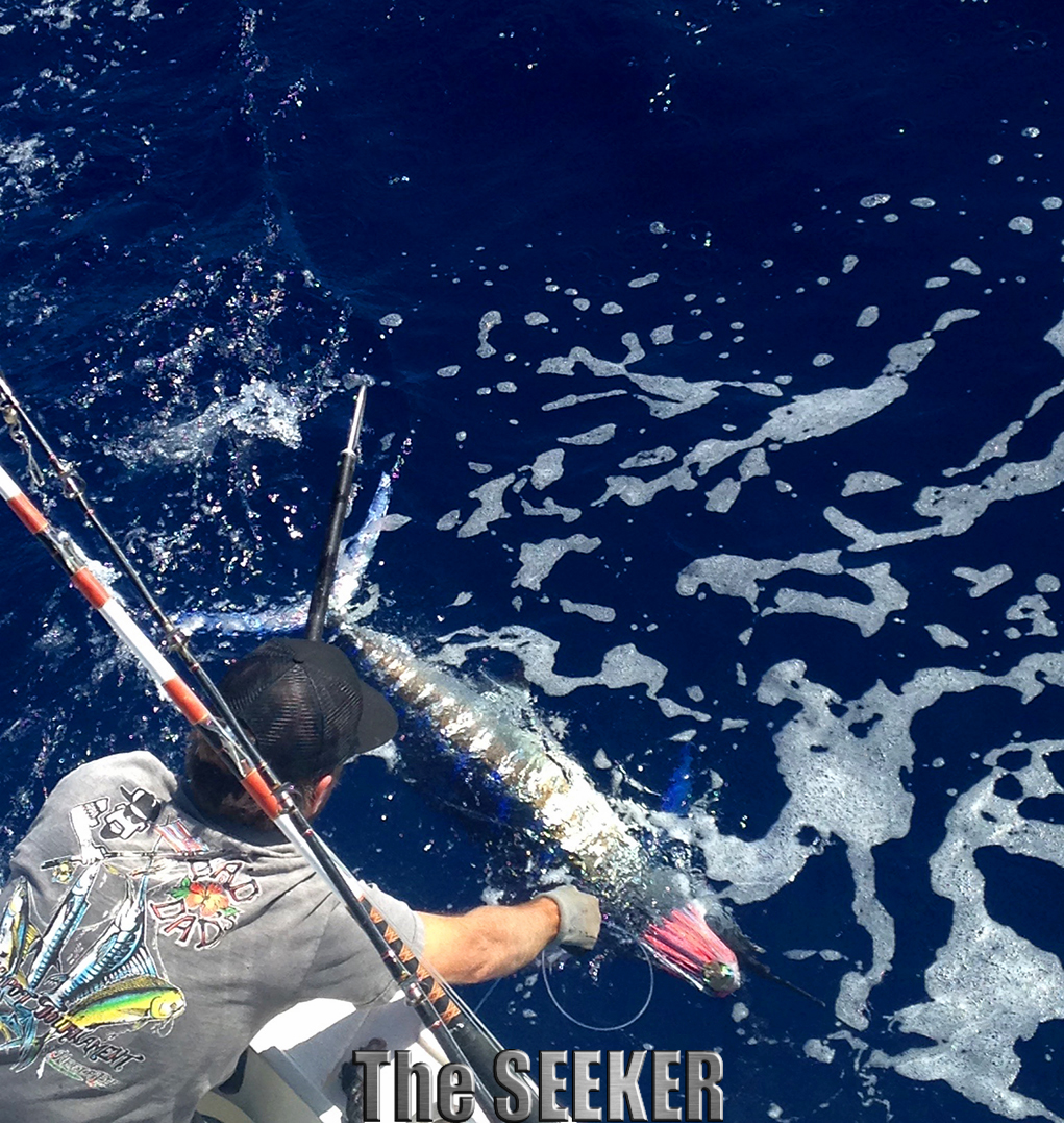 Seeker 2-7-15 Striped Marlin 3 release chupu fishing charter Oahu Hawaii