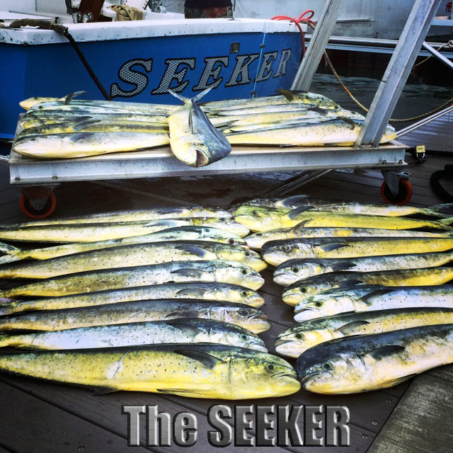 Seeker 3-3-15 Mahi Mahi chupu sport fishing charters Oahu Hawaii