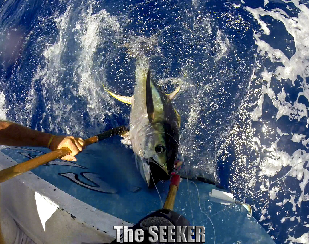 CHUPU SPORTFISHING CHARTER BOAT THE SEEKER