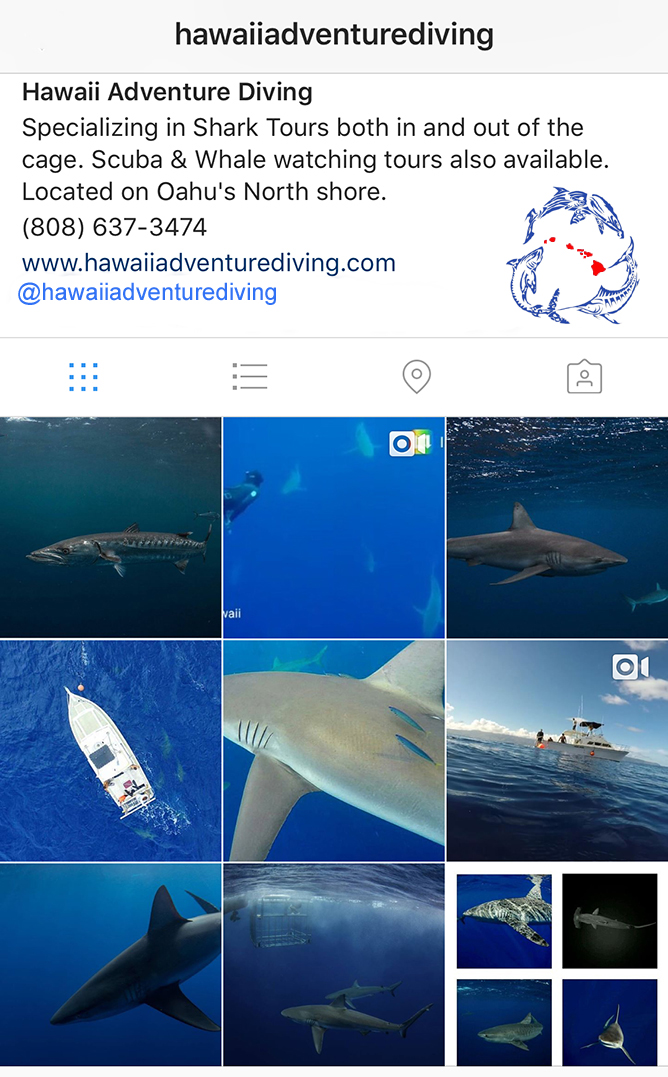 Hawaii Adventure Diving Instagram Page